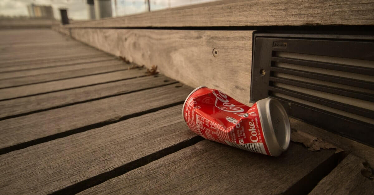 Litter is Destroying Our Earth – Environmental Issues