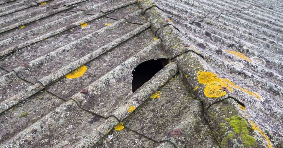 What Does Asbestos Look Like – Asbestos Removal